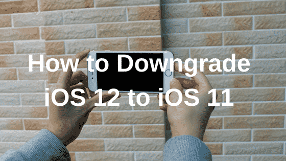 How to downgrade iOS 12 to iOS 11